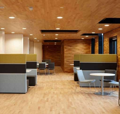 Junckers 2-Strip Beech Sylvaket Flooring