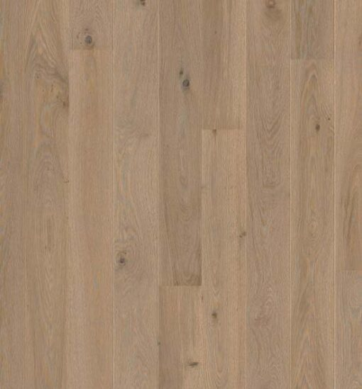 Boen Plank Oak Warm Grey Live Pure Lacquer 138mm Flooring PKG843FD